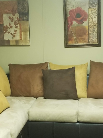 Therapy space picture #3 for Dr. Lavanya Devdas, therapist in New York, Pennsylvania