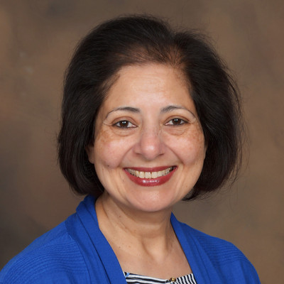 Picture of Darakhshinda Bari, therapist in Illinois
