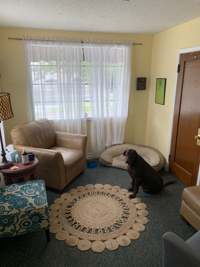 Therapy space picture #3 for Matt Angleman, therapist in Colorado