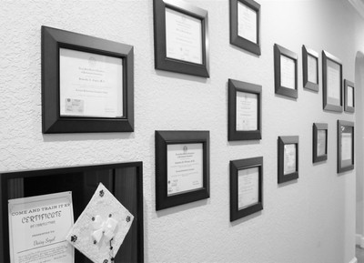 Therapy space picture #5 for Eynar Hernandez, therapist in Texas