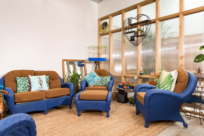 Therapy space picture #5 for Dr. Blythe Twosisters, PsyD, therapist in Texas
