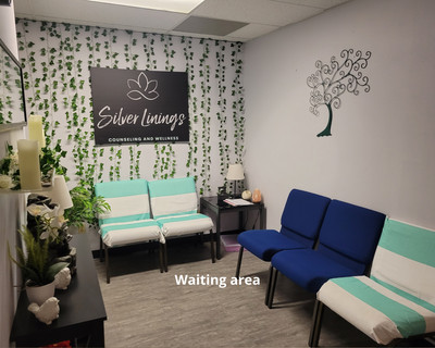 Therapy space picture #2 for Michelle Scott, therapist in Wisconsin