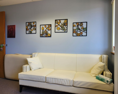 Therapy space picture #5 for Michelle Scott, therapist in Wisconsin