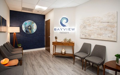Therapy space picture #3 for Alex Steiner, therapist in Florida