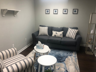 Therapy space picture #1 for Dr. Ashton Peltz, therapist in Florida