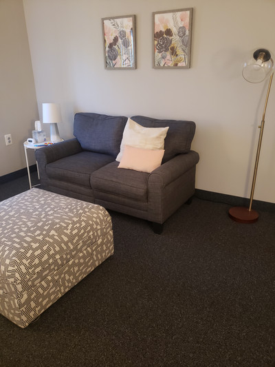 Therapy space picture #3 for Gabriela  Mueller, therapist in Michigan