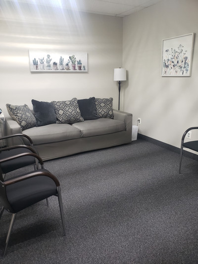 Therapy space picture #1 for Gabriela  Mueller, therapist in Michigan