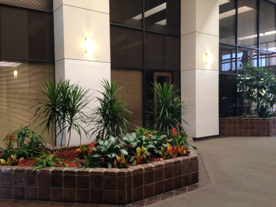 Therapy space picture #3 for Edward Wilson, therapist in Texas
